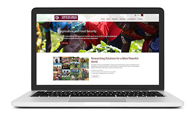 New Website Launch: Center on Conflict and Development